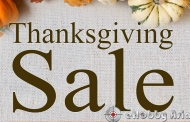 eHobbyAsia - Thanksgiving SALE